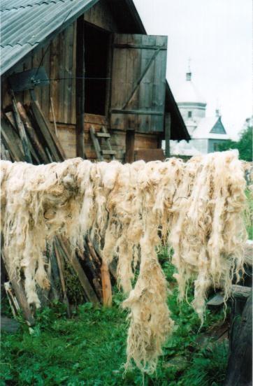 Выделка овечьей шерсти в домашних условиях