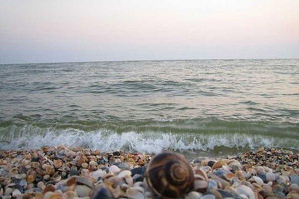 пляжи азова фото